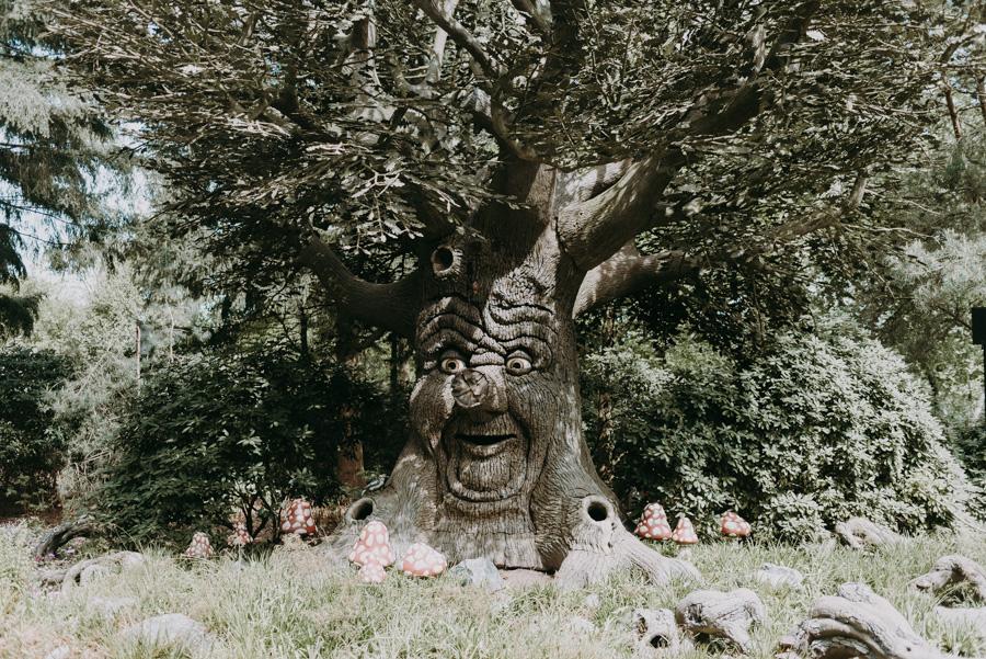 Geschichtenbaum