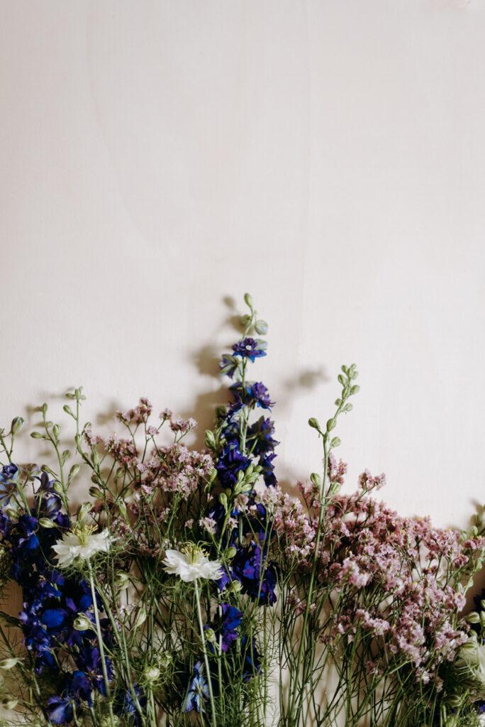 Blumenbild Juni